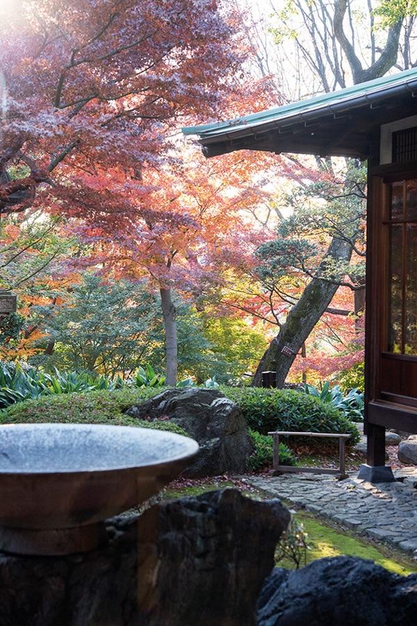 tokyo jardin villa